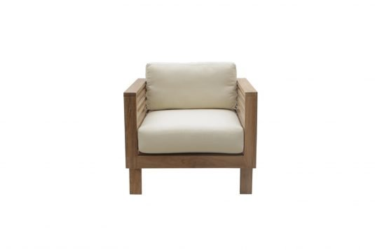 Picture of lounge chair from front with cushion